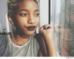 "Willow Smith's ""Topless"" Pic Starts Controversy"