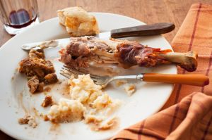 Studio shot of turkey leg with potatoes