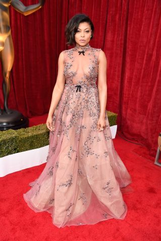 The 23rd Annual Screen Actors Guild Awards - Red Carpet