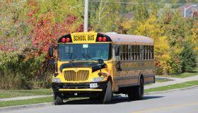 Yellow school bus on autumn background